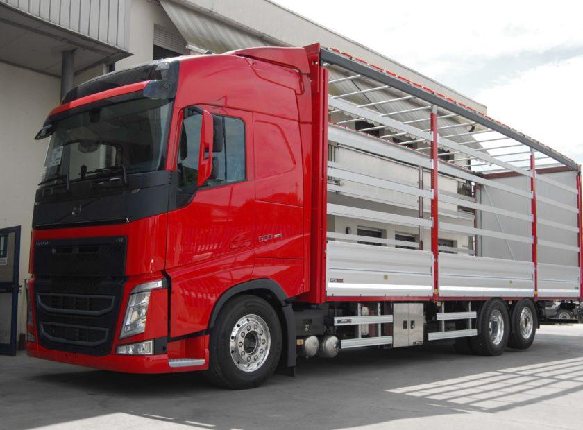 centine camion